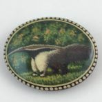 Russian Anteater